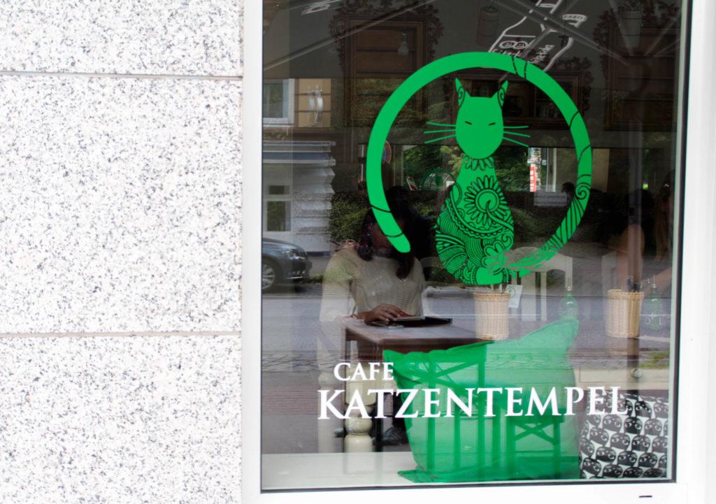Katzen-cafe-katzentempel-deutschland-hamburg-blog-blogger-food-event-katze-katzen-freizeit-tipp-ferien